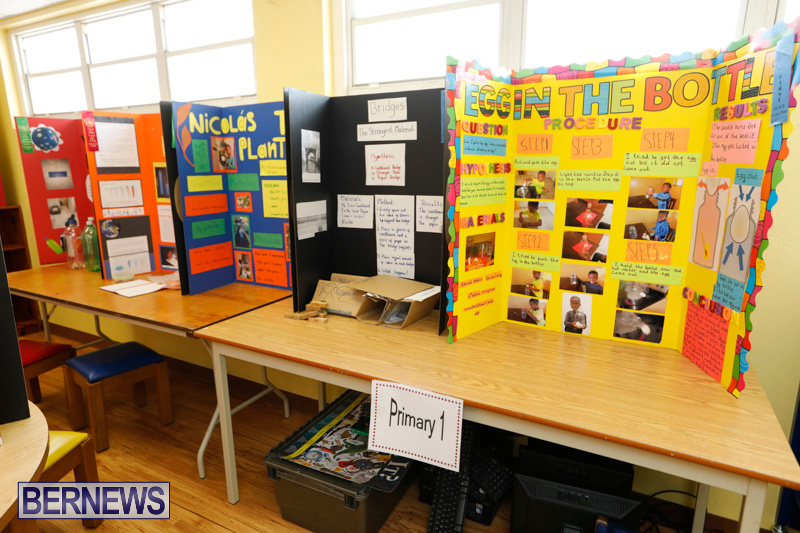 Purvis-Primary-Science-Fair-Bermuda-February-22-2018-2017