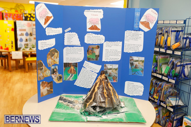 Purvis-Primary-Science-Fair-Bermuda-February-22-2018-2019