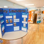 Purvis Primary Science Fair Bermuda, February 22 2018-2022