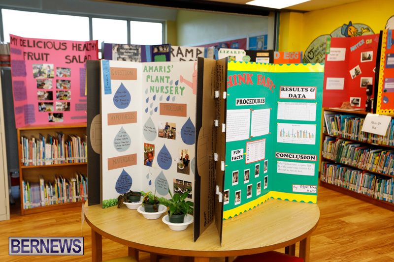Purvis-Primary-Science-Fair-Bermuda-February-22-2018-2039