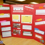 Purvis Primary Science Fair Bermuda, February 22 2018-2046