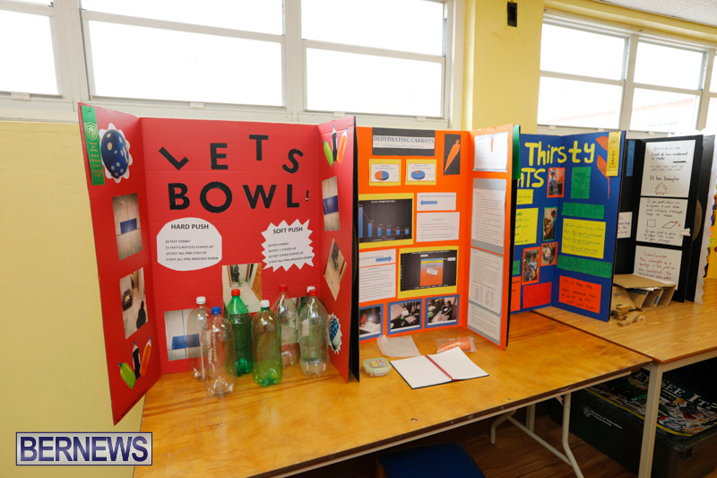 Purvis-Primary-Science-Fair-Bermuda-February-22-2018-2047