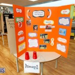 Purvis Primary Science Fair Bermuda, February 22 2018-2051