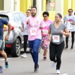 Road Race Bermuda Feb 7 2018 (16)