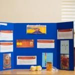 Saltus Science Fair Feb 2018 (2)