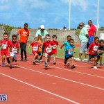 Telford Electric Magic Mile Bermuda, February 24 2018-2423