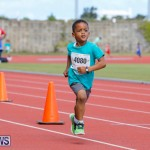 Telford Electric Magic Mile Bermuda, February 24 2018-2448
