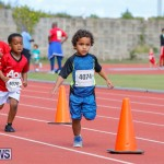 Telford Electric Magic Mile Bermuda, February 24 2018-2450