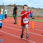 Telford Electric Magic Mile Bermuda, February 24 2018-2465