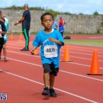 Telford Electric Magic Mile Bermuda, February 24 2018-2469