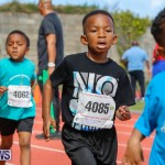 Telford Electric Magic Mile Bermuda, February 24 2018-2471