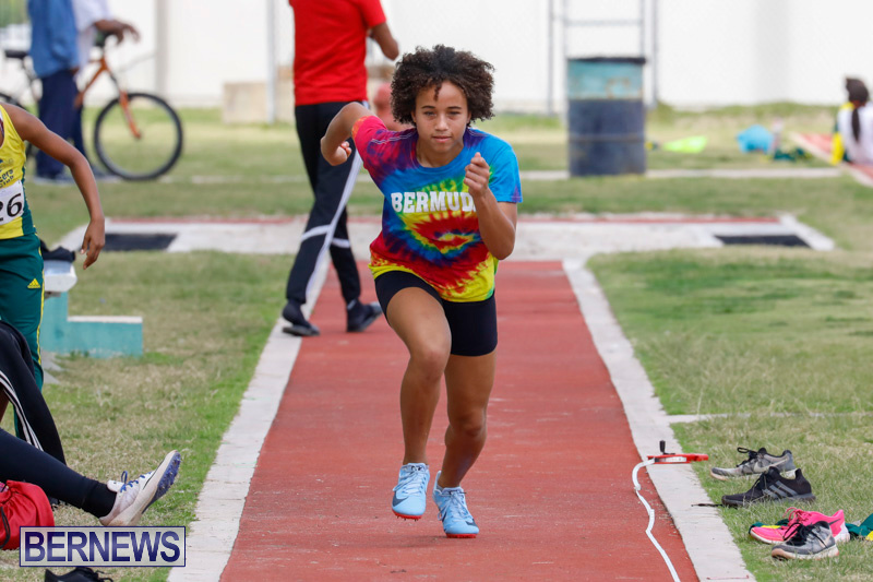 Track-Meet-Bermuda-February-18-2018-0946