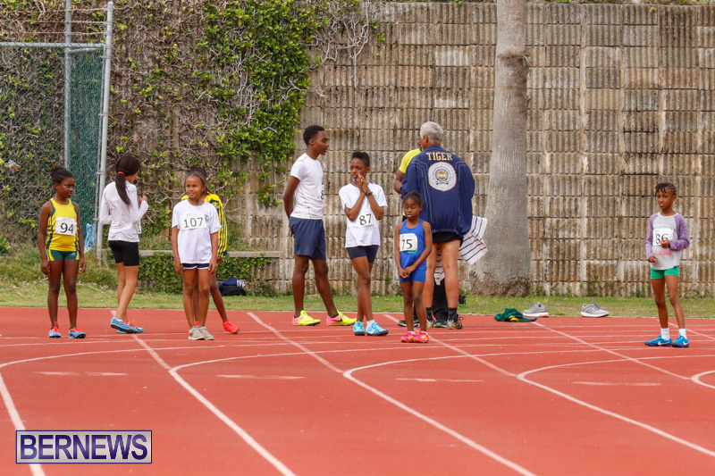 Track-Meet-Bermuda-February-18-2018-1050