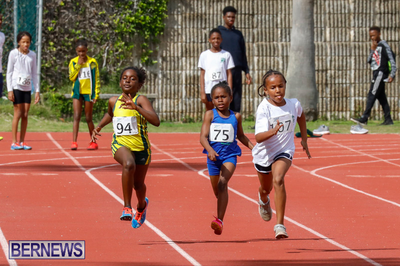 Track-Meet-Bermuda-February-18-2018-1051