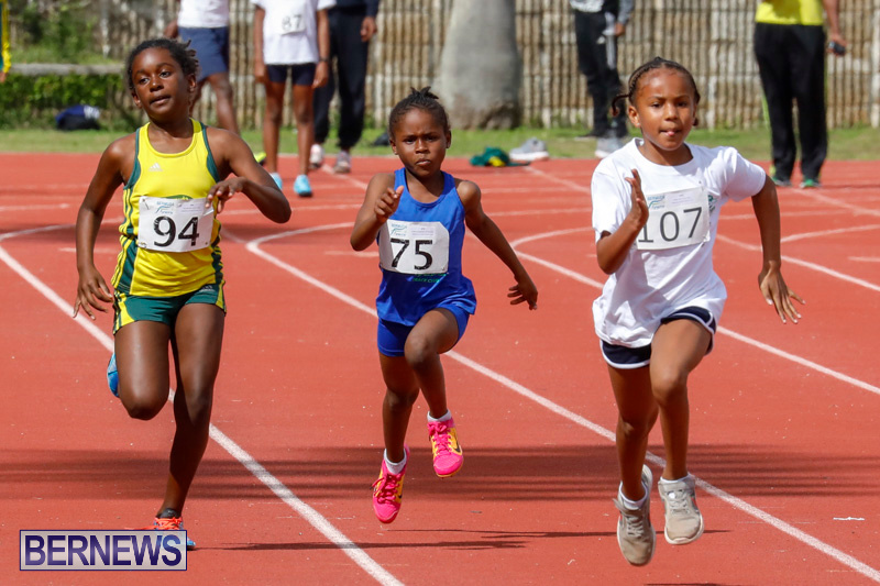 Track-Meet-Bermuda-February-18-2018-1058