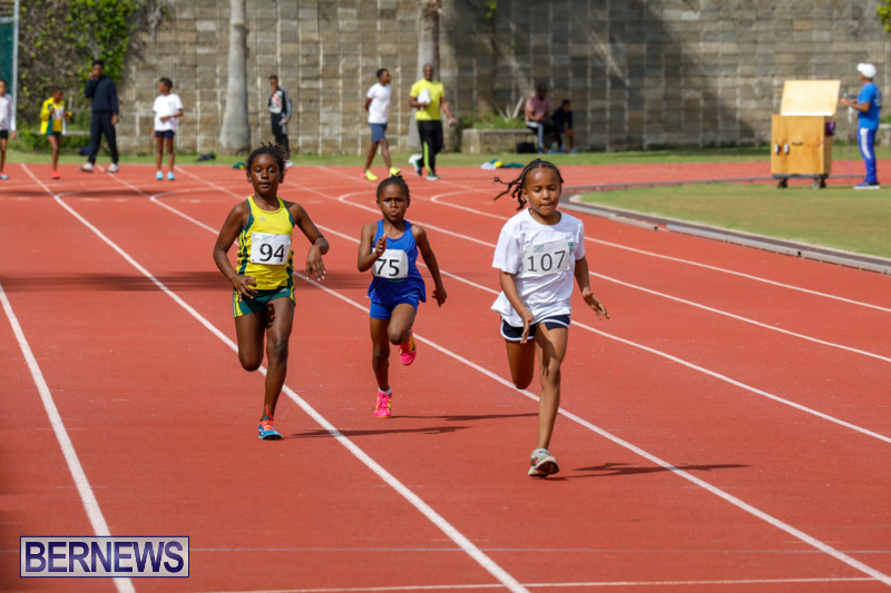 Track-Meet-Bermuda-February-18-2018-1064