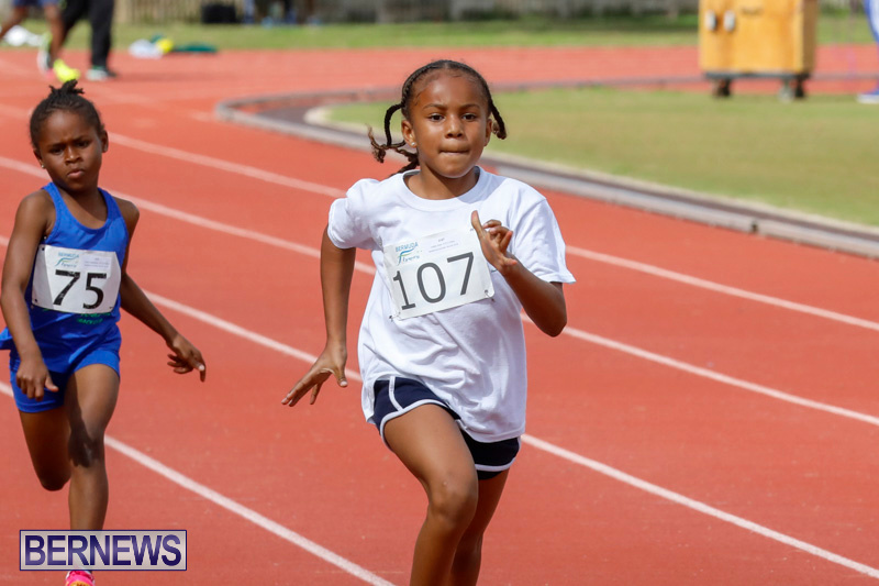 Track-Meet-Bermuda-February-18-2018-1066