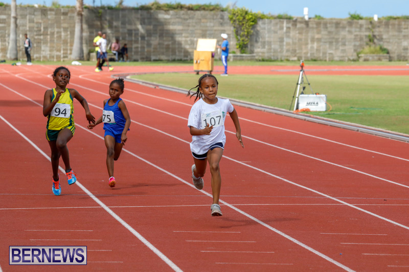 Track-Meet-Bermuda-February-18-2018-1069