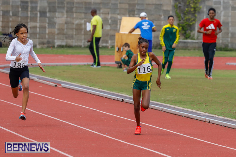 Track-Meet-Bermuda-February-18-2018-1083