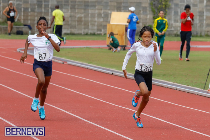 Track-Meet-Bermuda-February-18-2018-1088