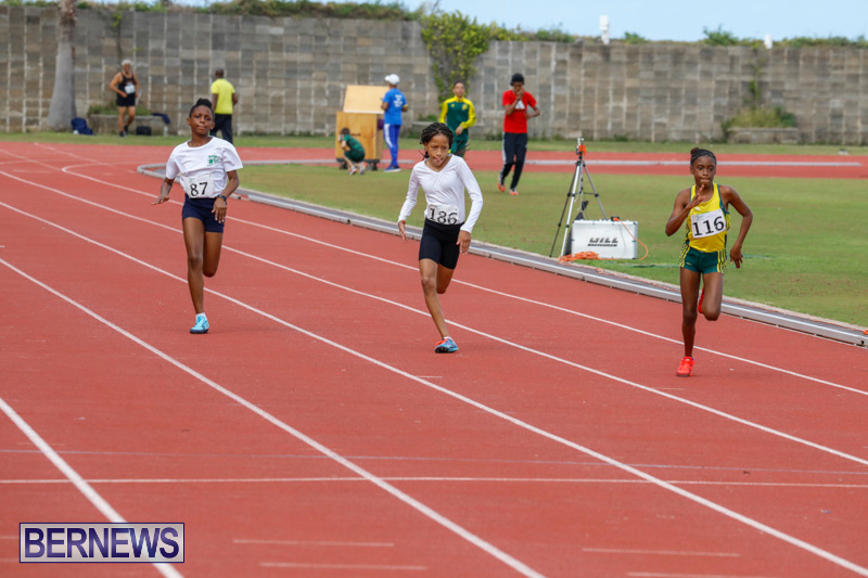 Track-Meet-Bermuda-February-18-2018-1089