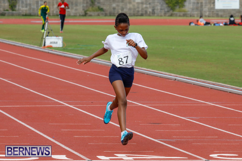 Track-Meet-Bermuda-February-18-2018-1100