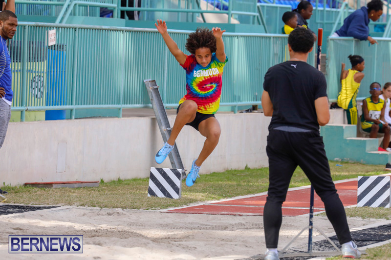 Track-Meet-Bermuda-February-18-2018-1126