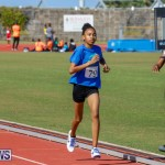 Track Meet Bermuda, February 18 2018-1168