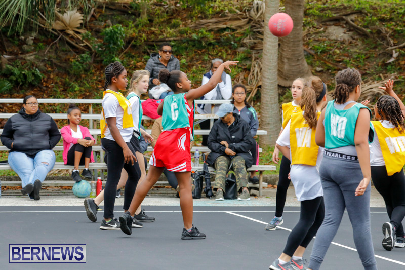 Zone-Netball-Bermuda-February-3-2018-7308