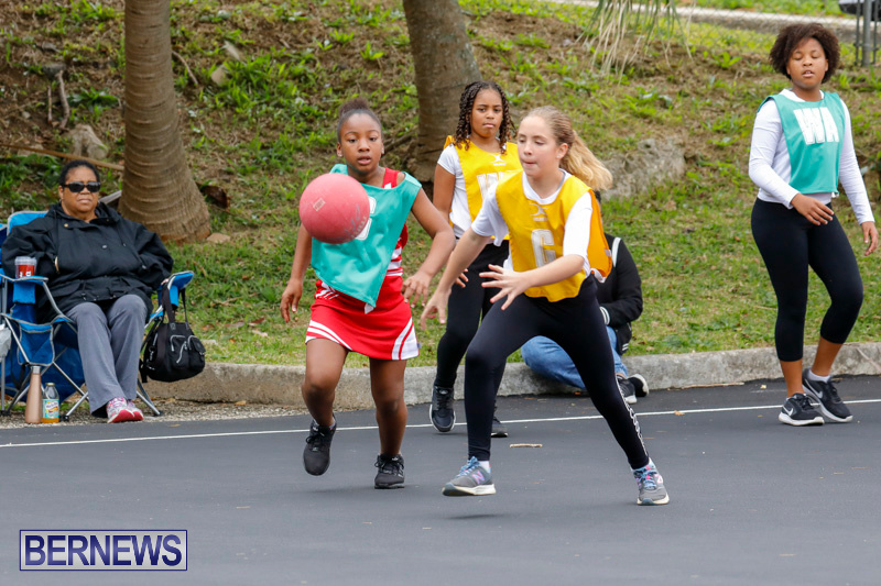 Zone-Netball-Bermuda-February-3-2018-7315