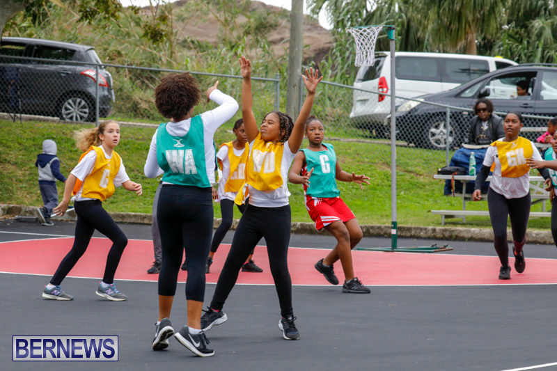 Zone-Netball-Bermuda-February-3-2018-7331