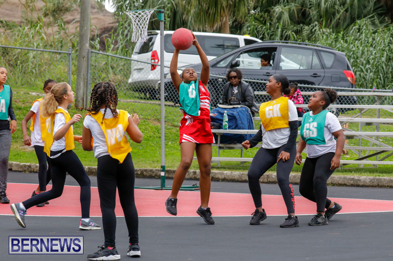 Zone-Netball-Bermuda-February-3-2018-7332