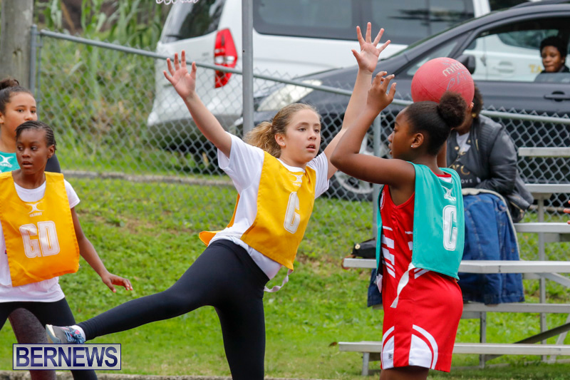 Zone-Netball-Bermuda-February-3-2018-7336