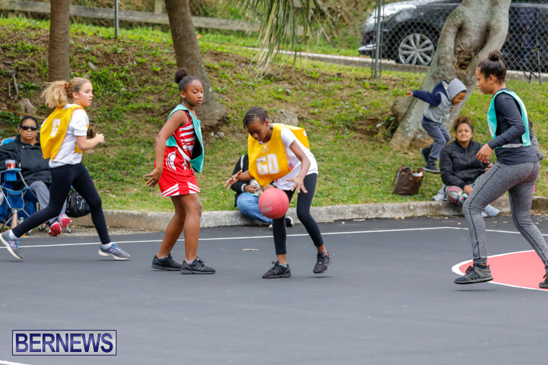 Zone-Netball-Bermuda-February-3-2018-7358