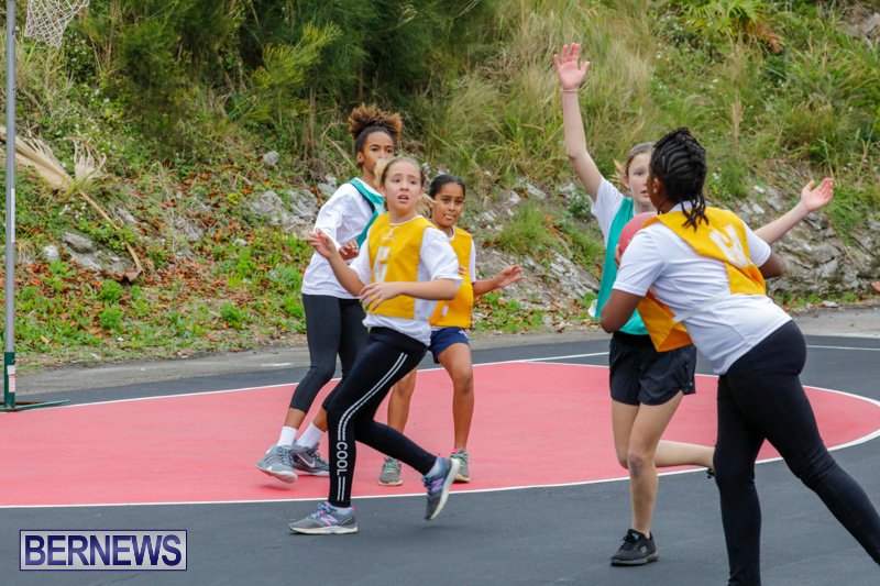 Zone-Netball-Bermuda-February-3-2018-7373