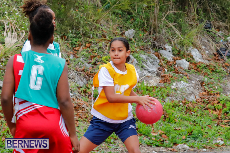 Zone-Netball-Bermuda-February-3-2018-7380