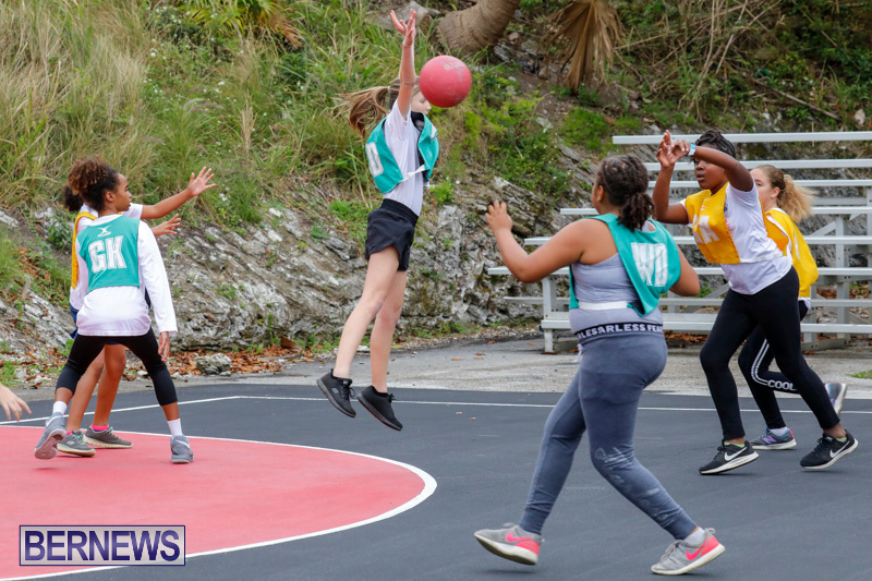 Zone-Netball-Bermuda-February-3-2018-7386