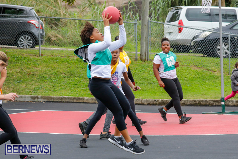 Zone-Netball-Bermuda-February-3-2018-7392