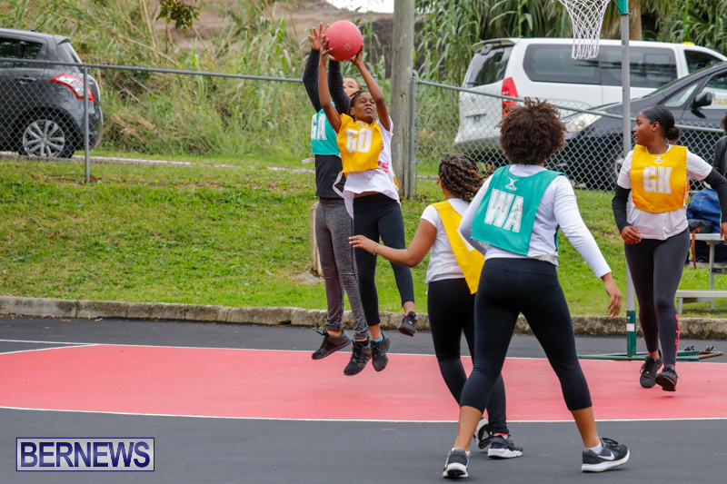 Zone-Netball-Bermuda-February-3-2018-7395