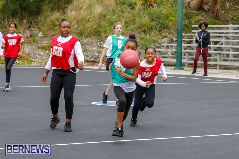 Zone-Netball-Bermuda-February-3-2018-7493