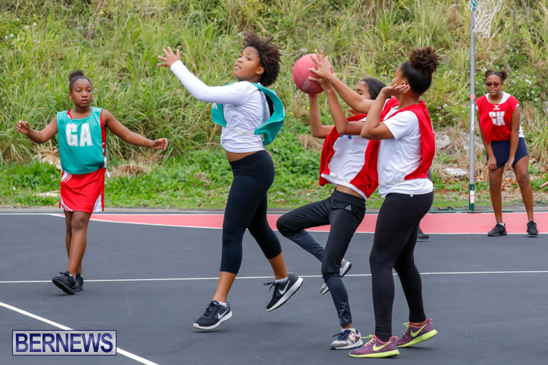 Zone-Netball-Bermuda-February-3-2018-7501