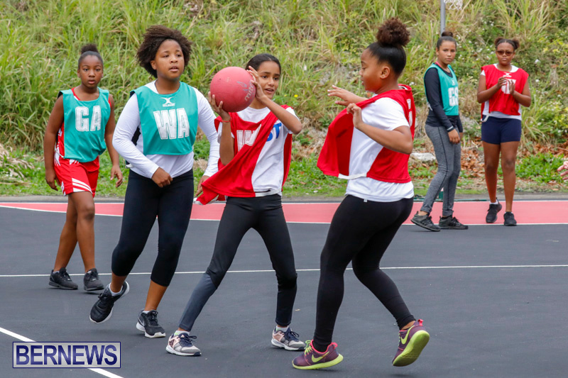 Zone-Netball-Bermuda-February-3-2018-7502