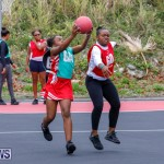Zone Netball Bermuda, February 3 2018-7562