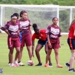 rugby Bermuda Feb 28 2018 (17)
