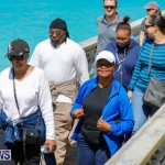 Bermuda National Trust Palm Sunday Walk, March 25 2018-5551