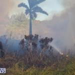 Devonshire Marsh Fire Mar 17 (15)