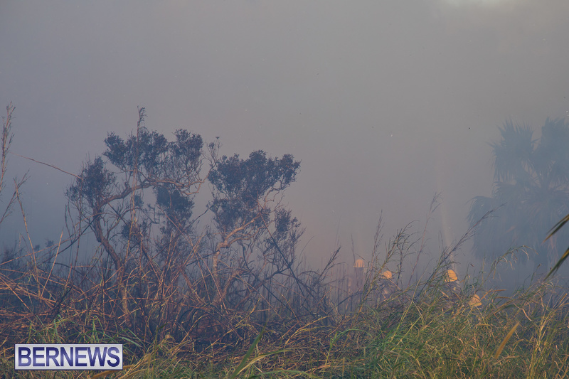 Devonshire-Marsh-Fire-Mar-17-16