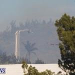 Devonshire Marsh Fire Mar 17 (22)