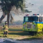 Devonshire Marsh Fire Mar 17 (24)