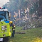 Devonshire Marsh Fire Mar 17 (29)